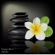 Flower Frangipani on Dark Background - GraphicRiver Item for Sale