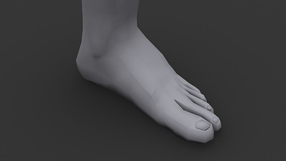 Human Male Foot Low Poly - 3DOcean Item for Sale
