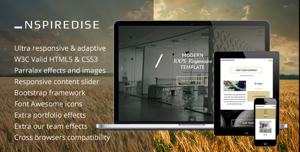 Extraordinary _NSPIREDISE - Onepage Parallax Responsive Template