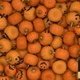 Halloween Pumpkin Transition - VideoHive Item for Sale