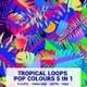 Tropical Loops Pop Colours  5 In 1 - VideoHive Item for Sale