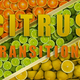 Citrus Transitions - VideoHive Item for Sale