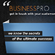 BUSINESS PRO - ThemeForest Item for Sale