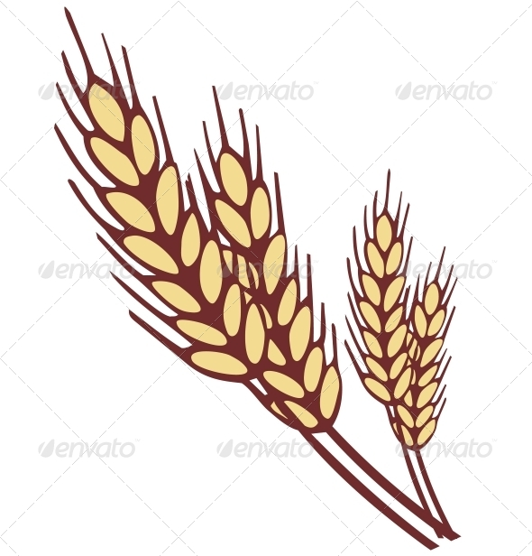 Wheat Ear - Food Objects