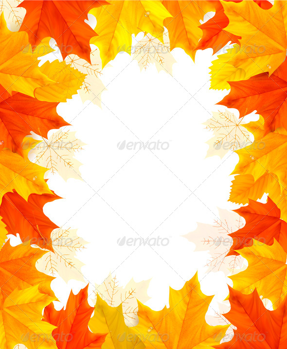 Autumn Background with Colorful Leaves. - Flowers & Plants Nature