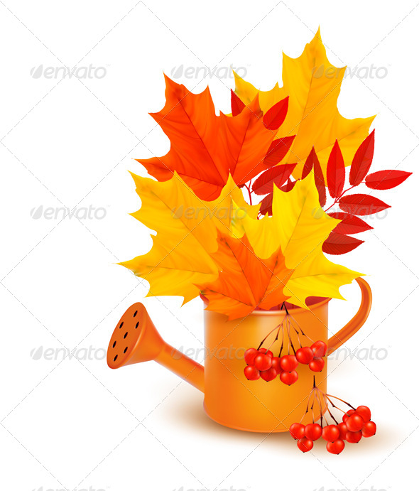Autumn Background with Colorful Leaves - Seasons Nature