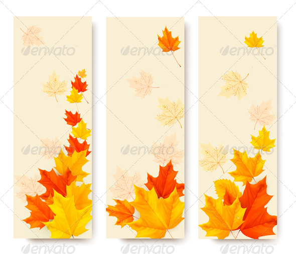 Three Autumn Banners with Colorful Leaves - Seasons Nature
