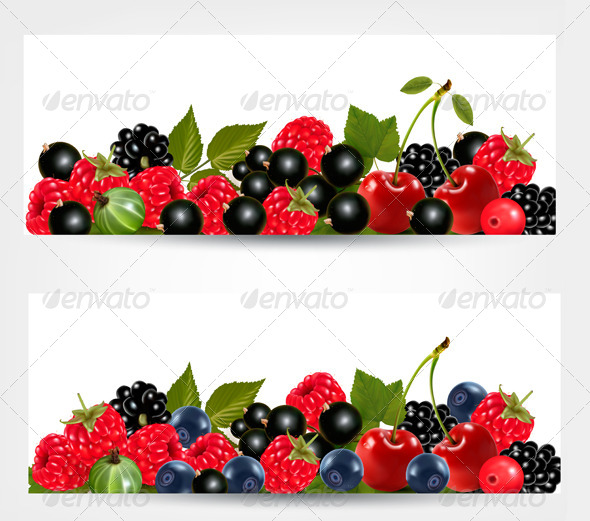 Two Banners with Delicious Ripe Berries - Food Objects