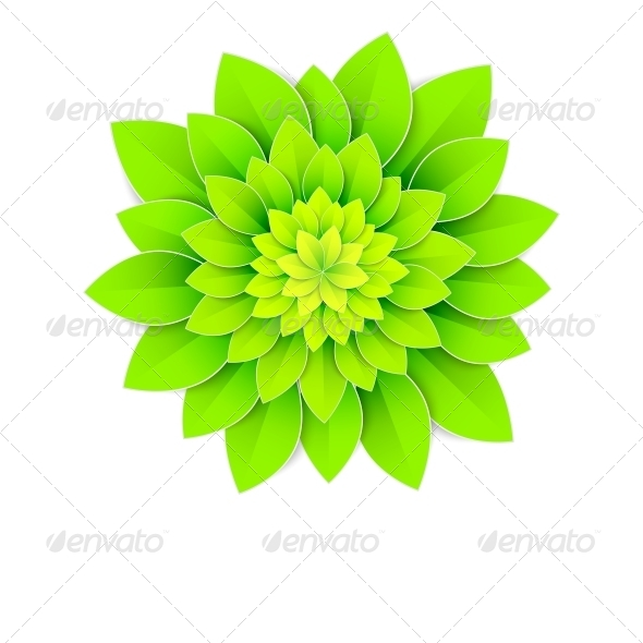 Background with Green Flower - Flowers & Plants Nature