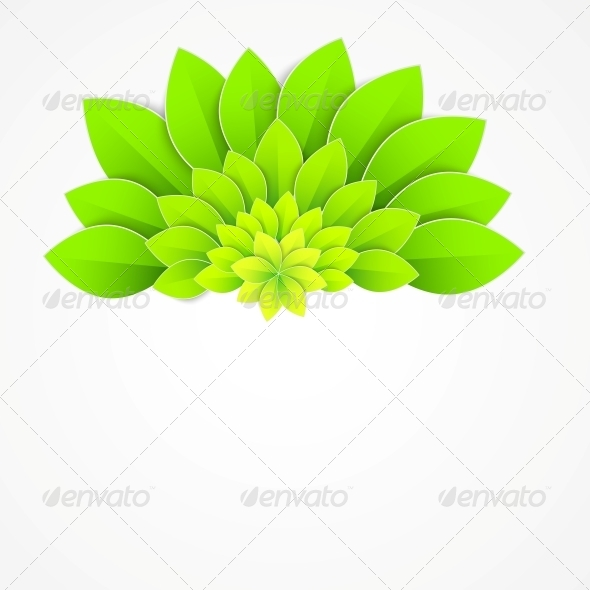 Background with Green Flower. - Flowers & Plants Nature