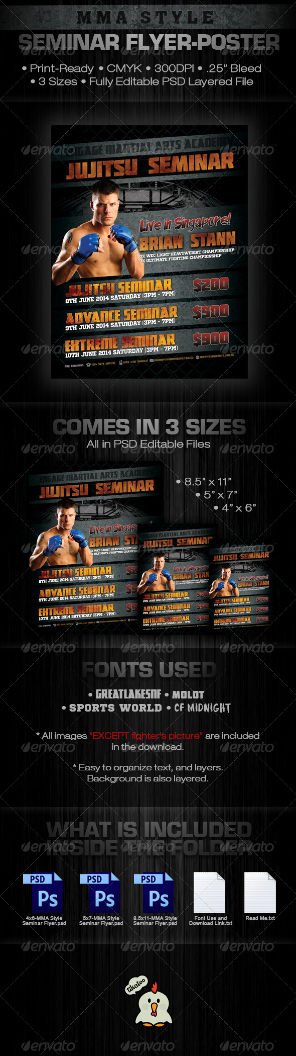 MMA Style Seminar Flyer - Sports Events