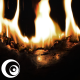 Fire Burn 01 - VideoHive Item for Sale