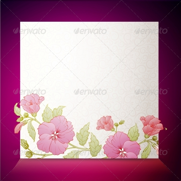 Vintage Hibiscus Flower on White Background. - Flowers & Plants Nature