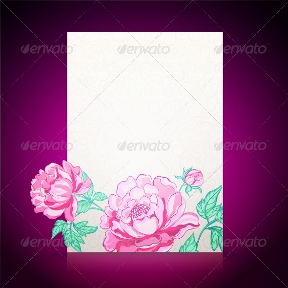 Card Background from Peonies - Flowers & Plants Nature