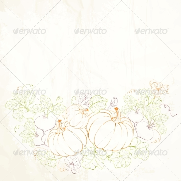 Pumpkins, Autumn Harvest. - Seasons Nature