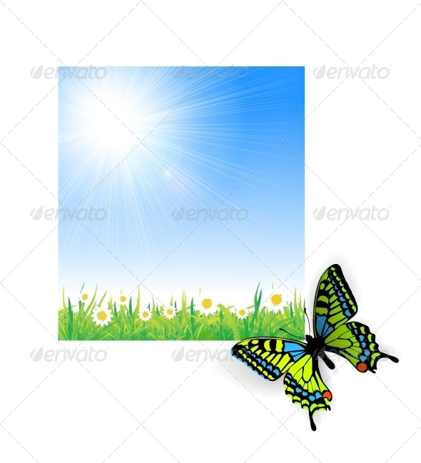 Illustration of Green Grass with a Butterfly - Landscapes Nature