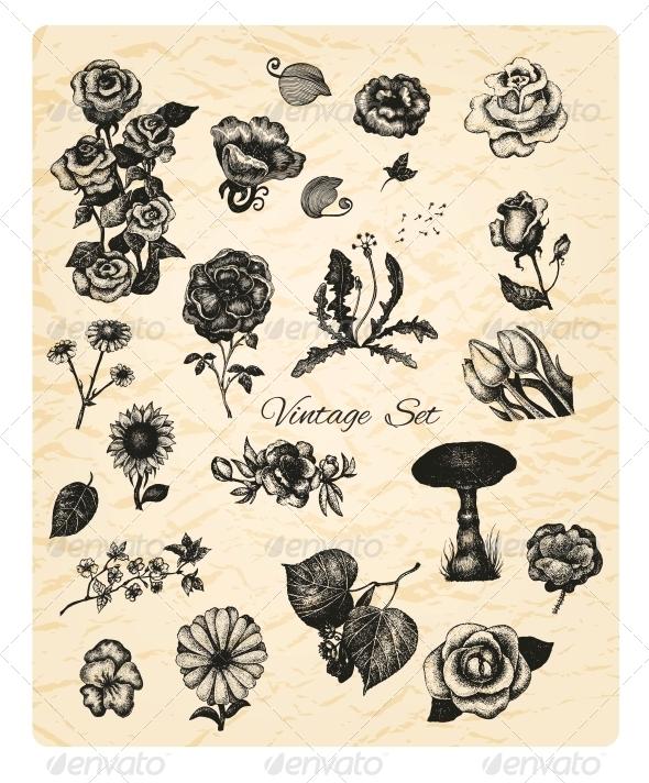Big Set of Vintage Flowers - Flowers & Plants Nature