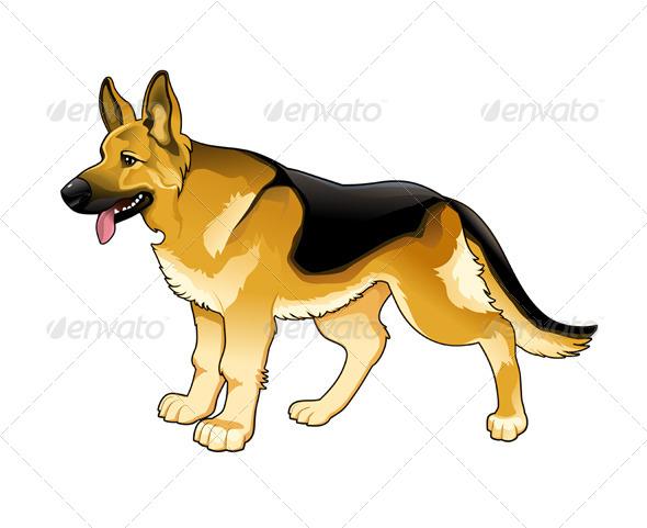 German Shepherd - Animals Characters