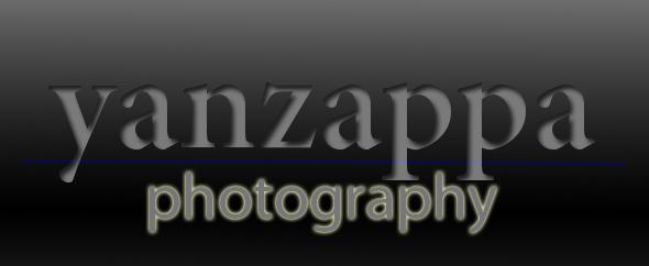 Logo290x242