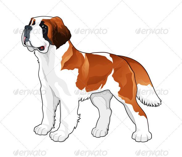 Saint Bernard - Animals Characters