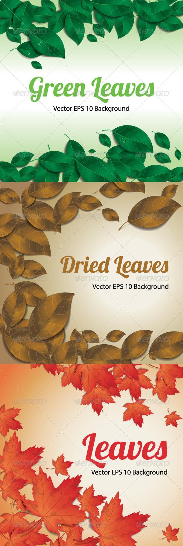 Leaf Background - Backgrounds Decorative