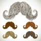 Lush Mustache Groomed in Several Colors