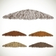 Mustache Groomed in Several Colors
