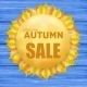 Autumn Sale Frame with Yellow Leaves - GraphicRiver Item for Sale