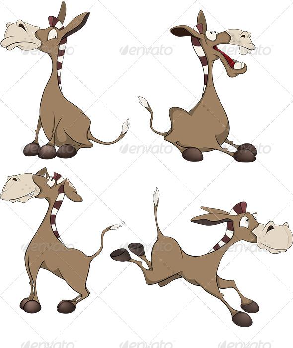 Burros Cartoon  - Animals Characters