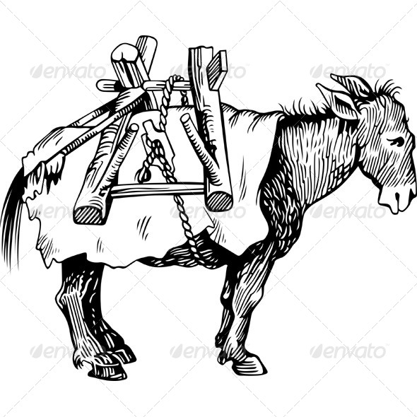 Transportation Donkey - Animals Characters