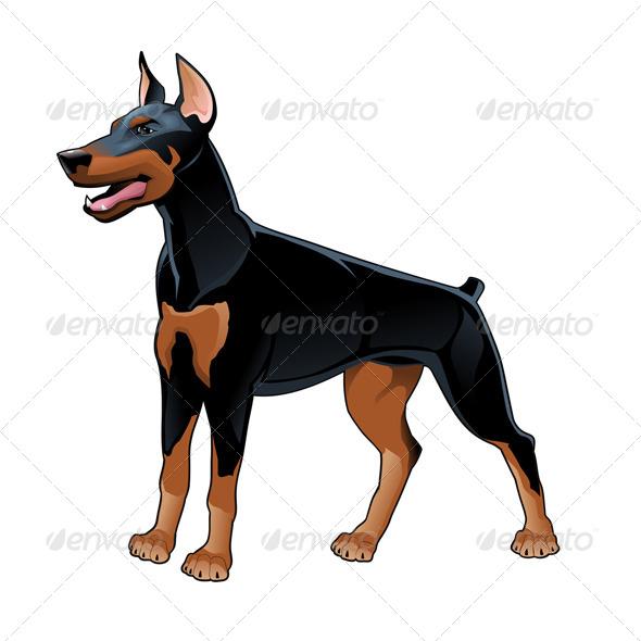 Dobermann Pinscher - Animals Characters