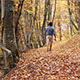Trekking Through Autumn Forest - VideoHive Item for Sale