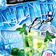 Cold Bash Party Flyer - 4x6 - GraphicRiver Item for Sale