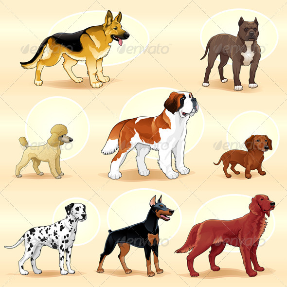 Groups of Dog.  - Animals Characters