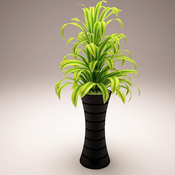 Plant Model C - 3DOcean Item for Sale