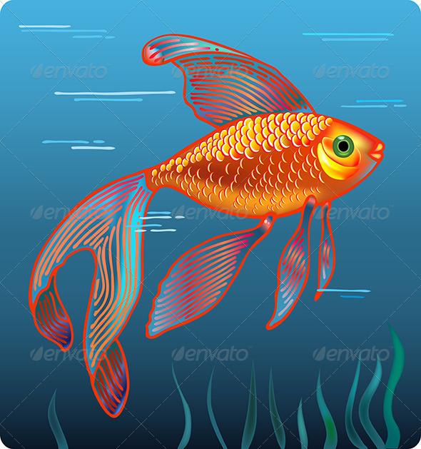 Golden Fish - Animals Characters