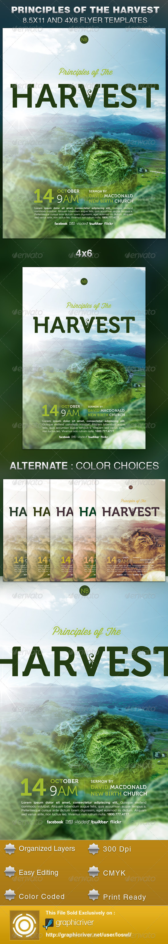 Principles of the Harvest Church Flyer Template - Church Flyers