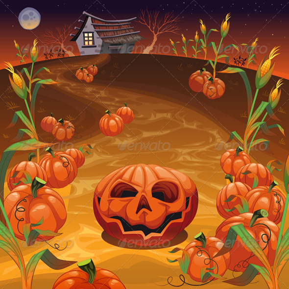 Pumpkins in the Field  - Halloween Seasons/Holidays