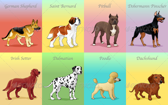 Groups of Dogs  - Animals Characters