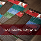 Flat Resume Template - GraphicRiver Item for Sale