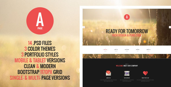 A-Page – Flat Onepage & Multipage PSD Template