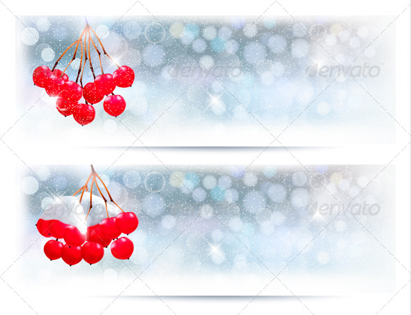 Holiday Banners with Christmas Branch with Berries - Christmas Seasons/Holidays