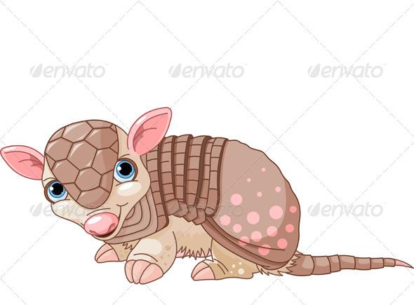 Armadillo Cartoon  - Animals Characters