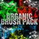 Organic Brush Pack - GraphicRiver Item for Sale