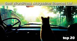 Best Magazine Themes - WordPress