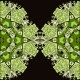Oriental Mandala Motif - GraphicRiver Item for Sale