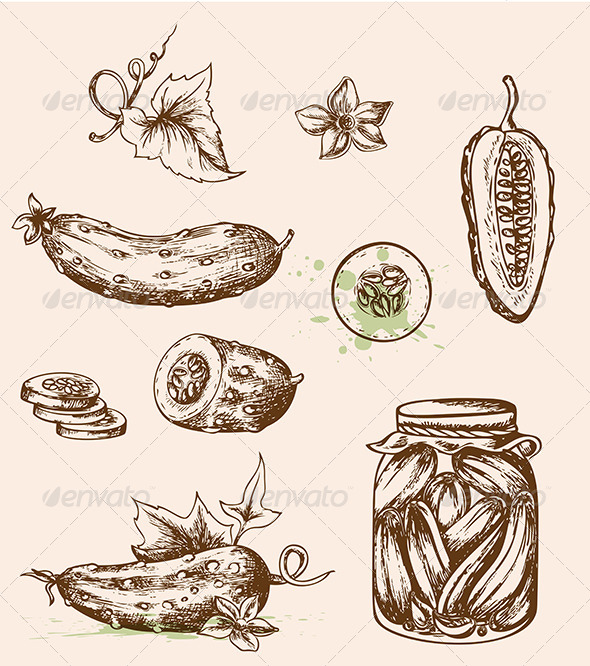 Vintage Vector Cucumbers - Food Objects