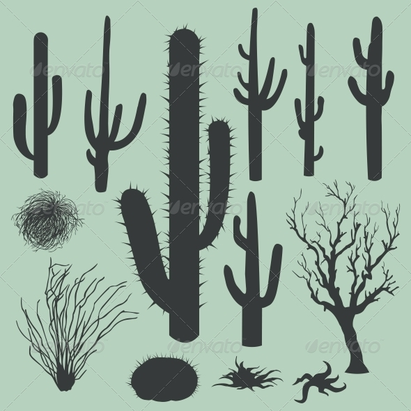 Vector Set of Silhouettes of Cactus - Landscapes Nature