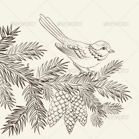 Bird on Christmas Fir and Pinecone - Christmas Seasons/Holidays
