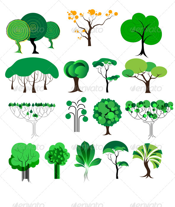 Decorative Trees - Flowers & Plants Nature